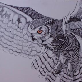Great in Flight by Valerie Aebischer - Drawing All Drawing ( owl drawing, owl, great horned owl, owls, ink,  )