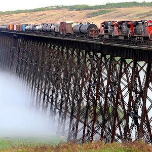 train on trestlecontrast1.JPG