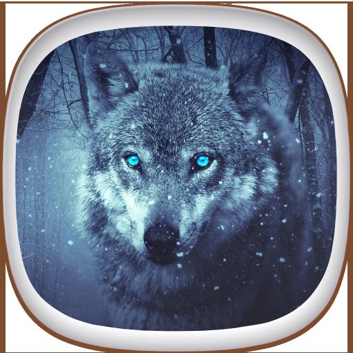 Sfondi cellulare lupi gratis