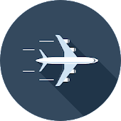 GoFlight - google Flight