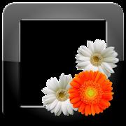 PhotoFrames Pro