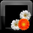 PhotoFrames Pro apk