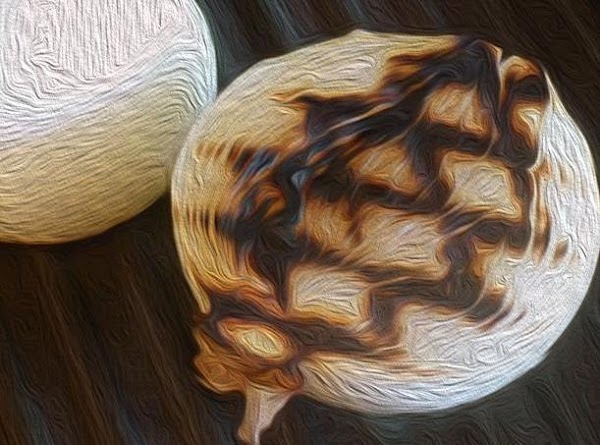 Begin by making the onion brûlée (the secret ingredient).  Chef's Note: An onion brûlée, is...