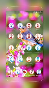 Patel barevné ptáci - náhled