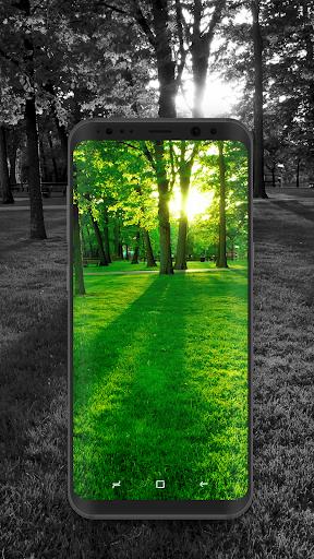 4K Wallpapers - HD & QHD Backgrounds 5.0.8 screenshots 2