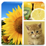 Photo Collage Editor v2.3