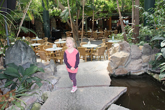 Photo: May 2013: Vacation park Centerparcs Meerdal in America (NL)