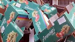 Cajas de producto marroquí  reetiquetadas en una empresa almeriense.
