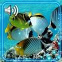Sea Underwater Live Wallpaper icon