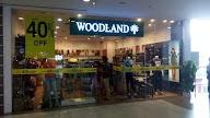 Woodland photo 1