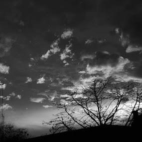 aero-drama by Ravi Shankar - Backgrounds Abstract