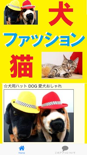 犬猫ファッション