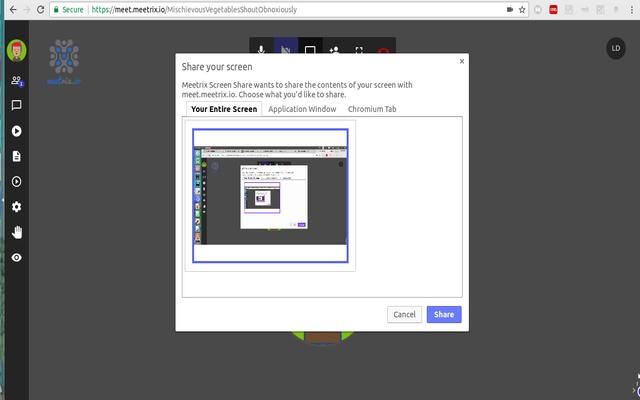 Meetrix Screen Share
