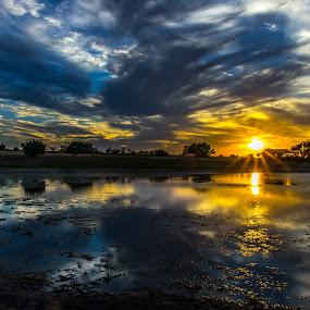 Lometa Star by Robert Marquis - Landscapes Sunsets & Sunrises ( sunrises, nature, sunsets, texas, image of the year, bob marquis, landscapes, landscape )