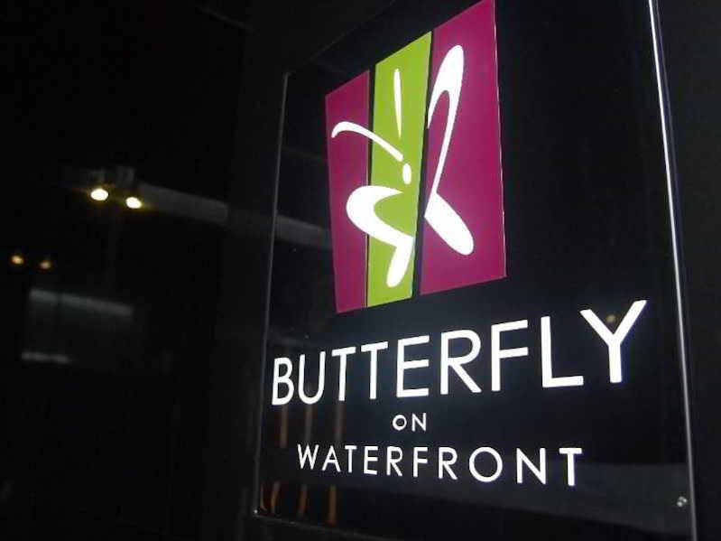 Butterfly On Waterfront