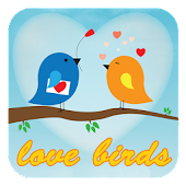 Love Birds Theme