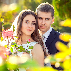 Wedding photographer Pavel Pavlenko (pasha2016). Photo of 05.11.2016