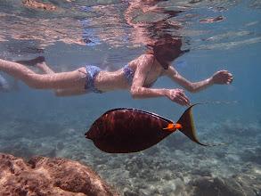 Photo: Hol and a fish (inHanauma Bay).