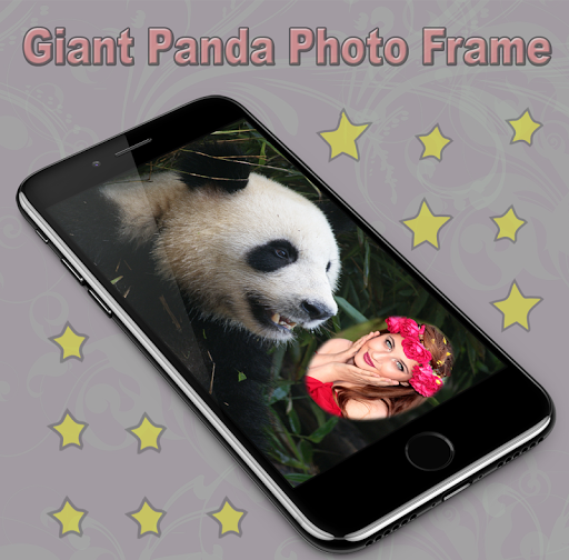 Giant Panda Photo Frame 1.1 screenshots 12