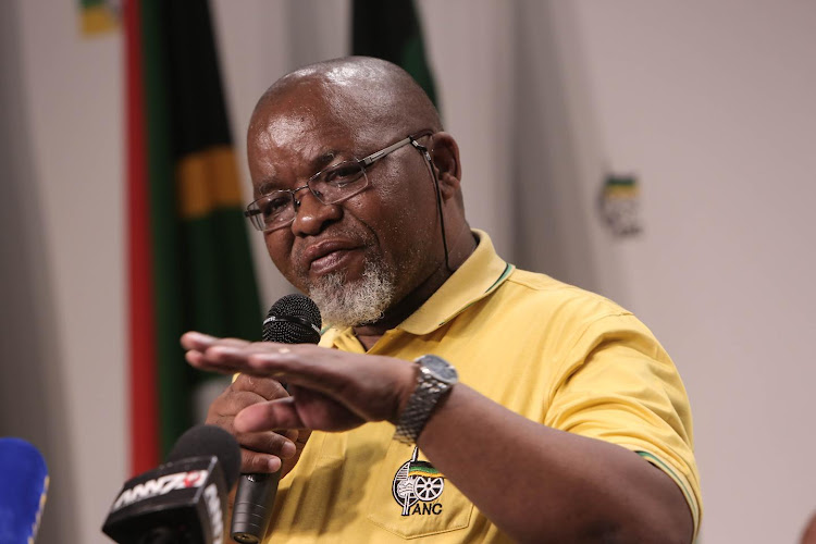Mineral Resources Minister Gwede Mantashe. Picture: SOWETAN