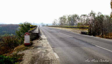 Photo: 2010.11.03