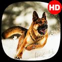 🔥 Cute Dogs Wallpaper | Cute puppy wallpaper icon