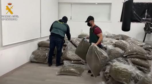 Hallado en La Mojonera el mayor alijo de marihuana de España: 5,6 toneladas