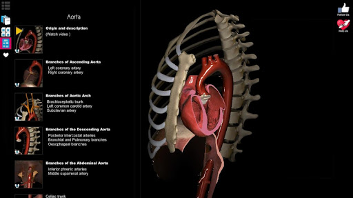 Anatomy Learning - 3D Atlas screenshot 16