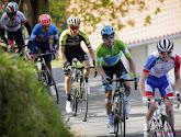 Gaudu dartelt indrukwekkend naar ritzege in Ronde van Romandië