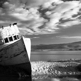 The Point Reyes by Terry Scussel - Landscapes Waterscapes ( beached boat, the point reyes, inverness ca, tomales bay )