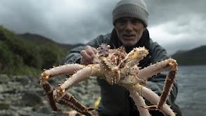 Alaska's Lost River Kings thumbnail