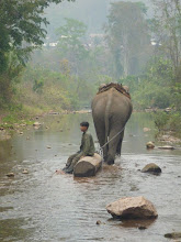Photo: Pro mahauta to až tak náročná práce není.