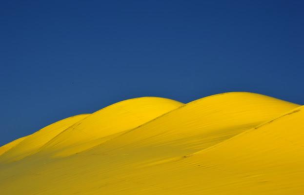 Dune gialle di palvi72