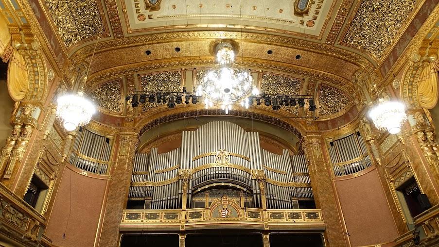 音樂廳,頂上密密麻麻的是月桂葉