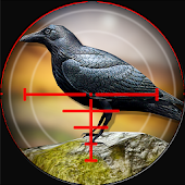 Forest Crow Hunter 3D - Sniper Shooting Simulation