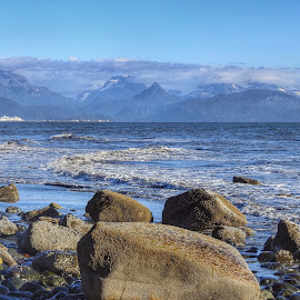 Bishops Beach by Patricia Phillips - Landscapes Beaches ( alaska beaches bishops homer )