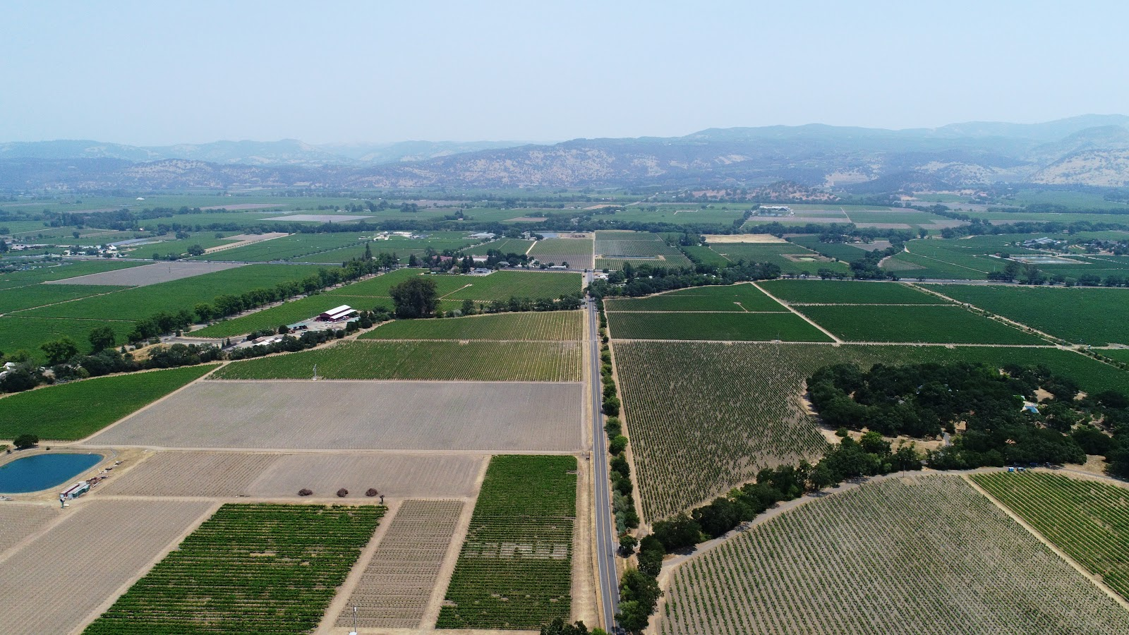 Bicycle climb up Oakville Grade Road - drone photo of view east towards St. Helena Highway- vineyards and roadway.