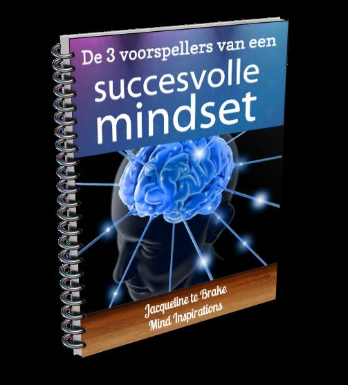 3 Voorspellers van een succesvolle mindset
