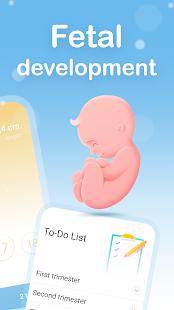 My Pregnancy