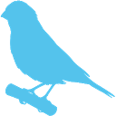 Phone Canary icon
