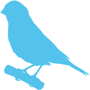 Phone Canary APK Download for Android