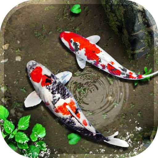 fish live wallpaper 3d real koi aquarium 2018 app apk free