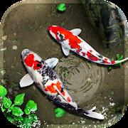 Free Fish Live Wallpaper 3D: Real Koi Aquarium 2018 APK for Windows 8