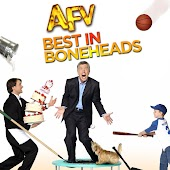 America's Funniest Home Videos: Best of Boneheads