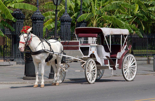 New-Orleans-Horse-and-Carriage-in-Jackson-Square.jpg - Visit historic Jackson Square in New Orleans for a chance to ride on a vintage horse-drawn carriage.