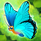 Flutter: Butterfly Sanctuary Android apk