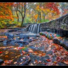 Stepping Stone Falls by Rich Reynolds - Landscapes Waterscapes ( fall colors, waterscape, foliage, waterfall, falls, colorfull, fallen leaves )