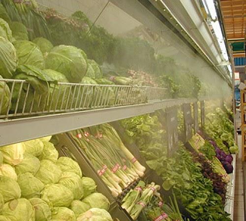 Lắp đặt kho lạnh bảo quản nông sản và vấn đề quan tâm - Điện Lạnh Hà Bắc  Sửa Chữa Bảo Dưỡng Lắp Đặt Chiller