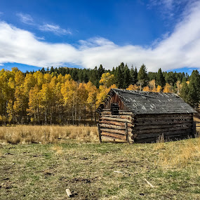 Old Homestead by Chad Roberts - Buildings & Architecture Public & Historical ( cabin, mountain, autumn, fall, historical, valley, homestead,  )