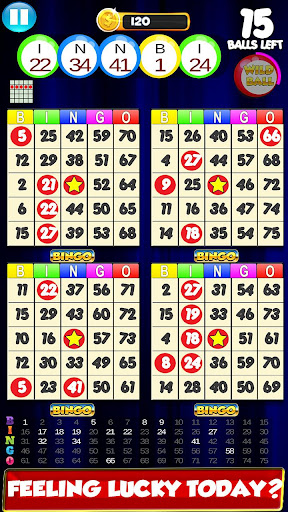 Bingo: New Free Cards Game Vegas and Casino Feel  screenshots 1